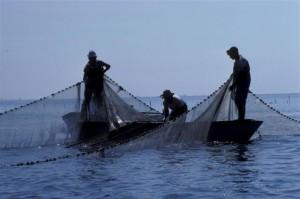 immagini di pesca (Small)