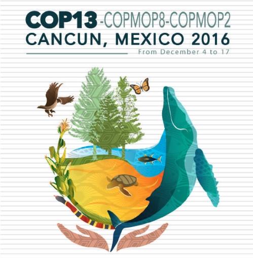 logo-cop3