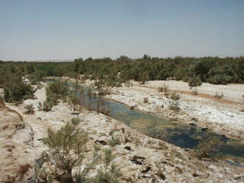 Fifa Ramsar Site