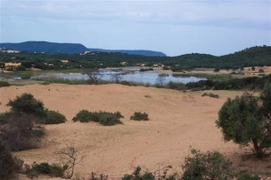 Wetland Site is Algiers, Algeria