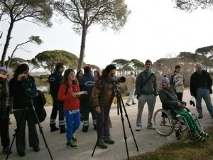 BirdWatching in the Strofylia wetlands for WWD2013. Photo Credit: D. Mamassis