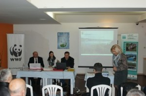 During the WWD2013 celebration in Bosnia and Herzegovina: Conference on the Hutovo Blato wetland