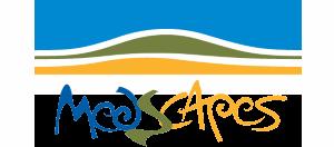 Logo_Medscape_web
