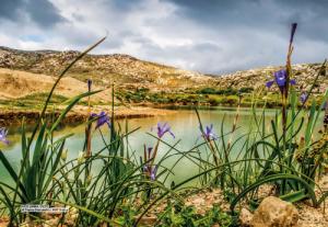 KatoLimnia_Crete_T.Giannakakis_WWFGreece