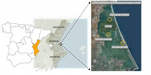 Location of Albufera de Valencia Natural Park and the constructed wetlands in Valencia (Spain).