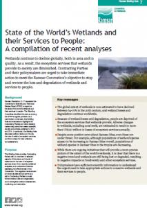 State of world wetland publi en