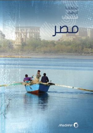 Egyptweb