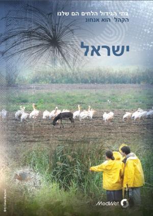 Israelweb