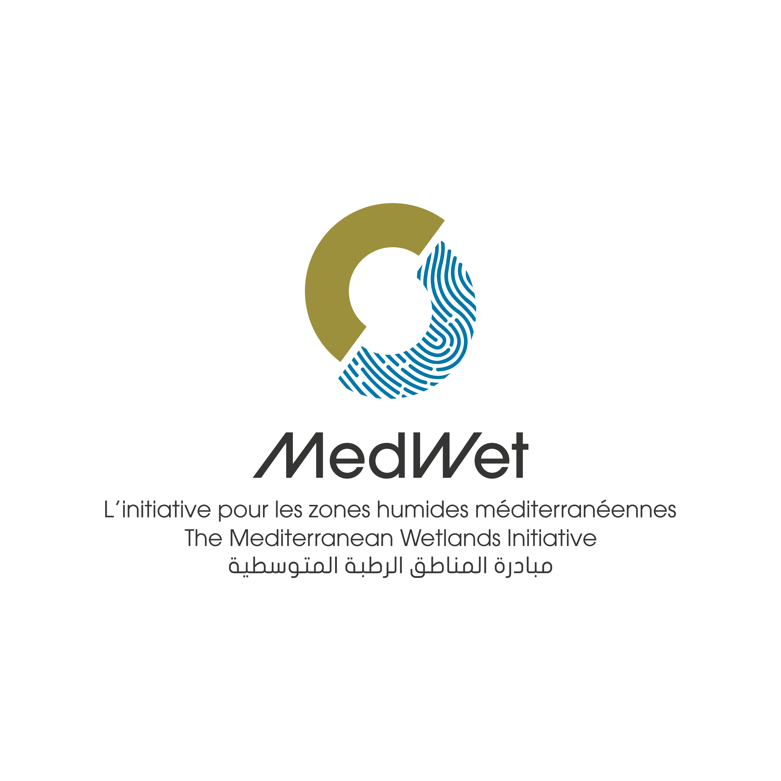 MedWet logotipo 3 language-color