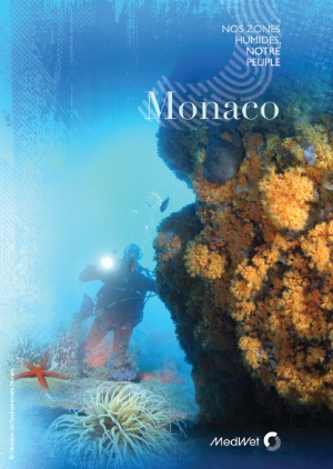 Monacoweb