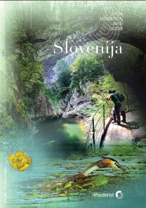 Sloveniaweb
