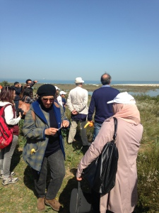 During the field trip in the Ramsar site Sebhket Soliman