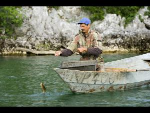 Fisherman and perch - Skadar lake - Montenegro