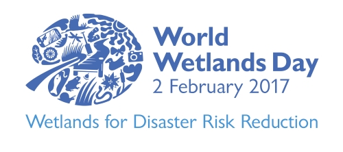 Image result for World Wetlands Day GIF