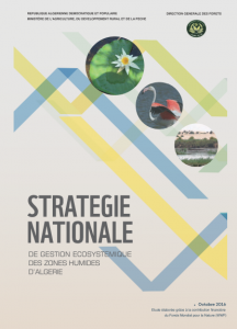 STRATEGIE ZH Algerie