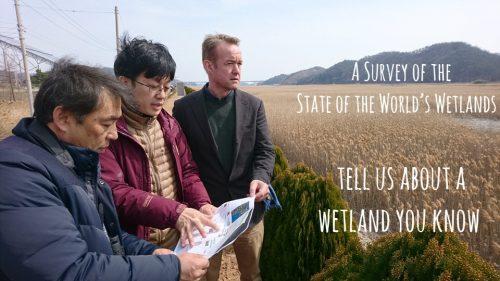 Enquête sur l'état des zones humides dans le monde