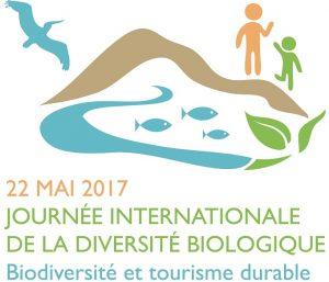 idb-2017-logo-fr