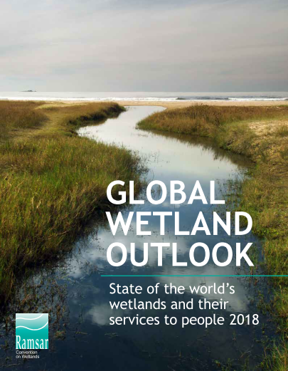 Image result for GLOBAL WETLANDS OUTLOOK 2018;