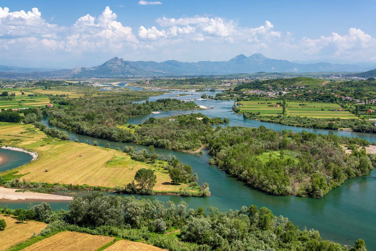 Action for Buna River – Call for proposals — Medwet