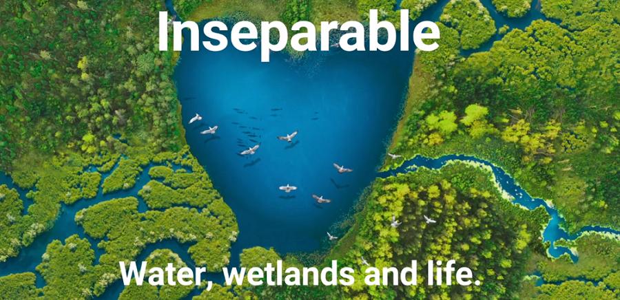 world-wetlands-day